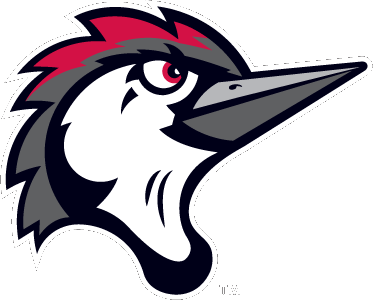 Fayetteville Woodpeckers Logo